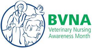 BVNA logo